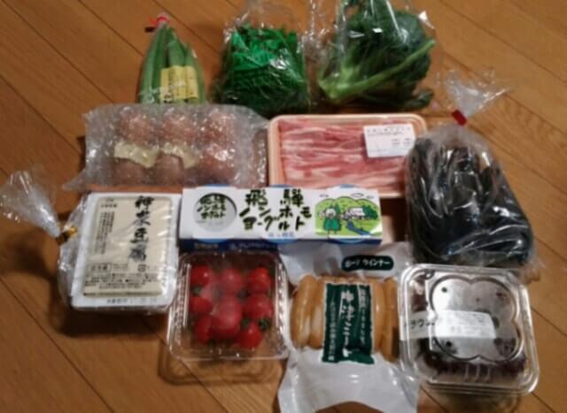 大地を守る会野菜食品お試しセット