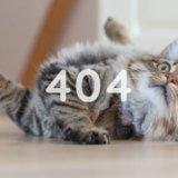 サーチコンソールでサイトマップ404エラーの対応手順